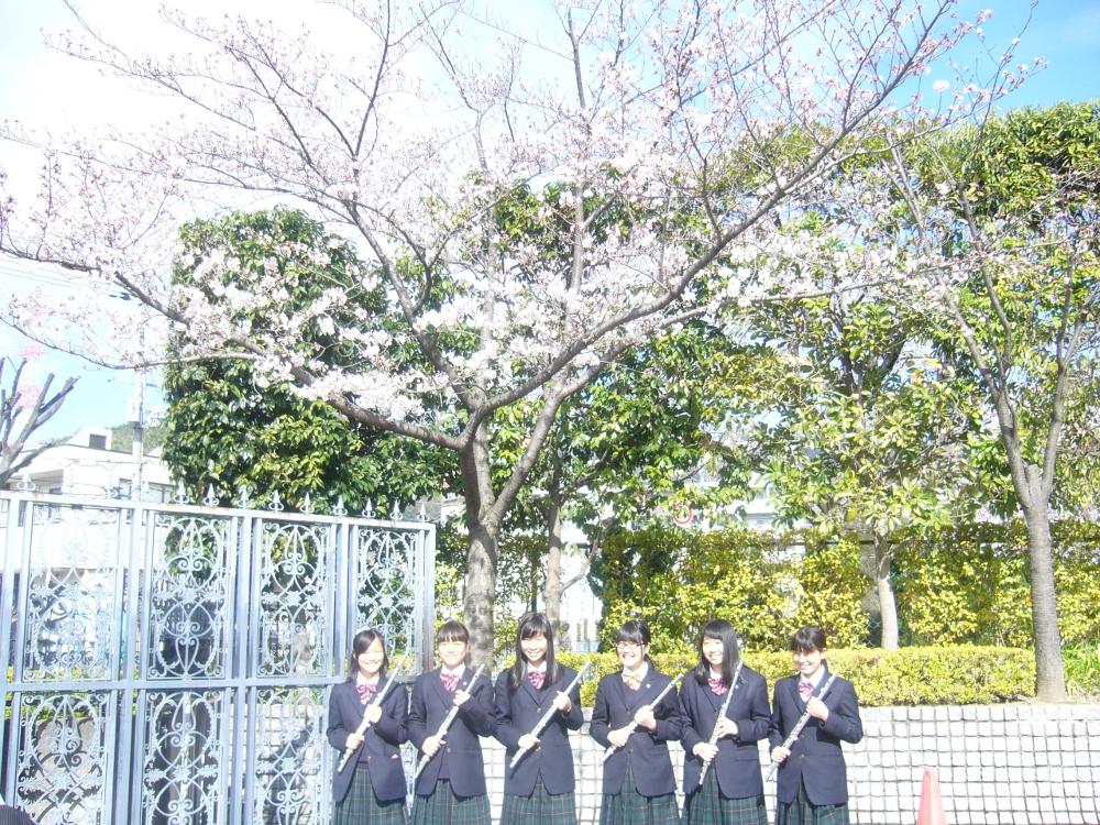 高校合格者説明会   金光大阪中学校・高等学校